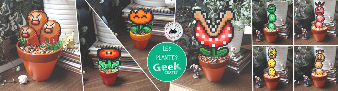 Les plantes Geek-Crafts !